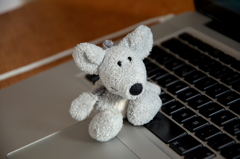 Stansted Airport lost mouse